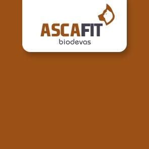 Ascafit